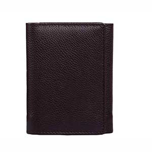 Trifold Card Case